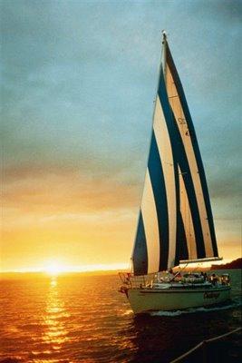 50-12yacht11.JPG
