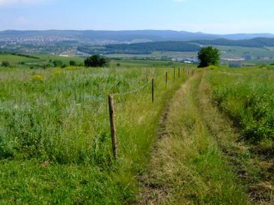 ルーマニア 土地 不動産投資