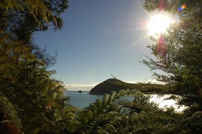 エイベルタズマン国立公園 ニュージーランド